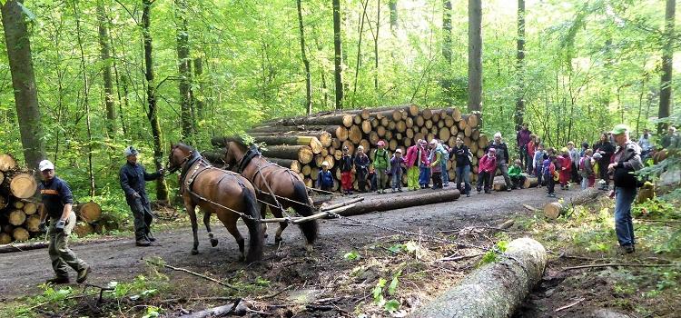 Forst Thal feiert 10-Jahr-Jubiläum